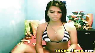 Ladyboy in webcam cerca di mettersi il cazzo in bocca!
