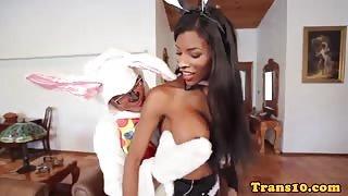 A carnevale mi scopo Natassia travestita da coniglietta