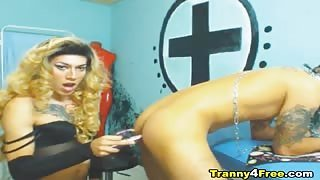 Trans tatuato scopa in webcam