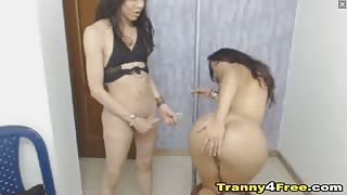 Transgender sexy e giovani in webcam
